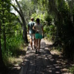 walking down the board walk in new orleans bayou